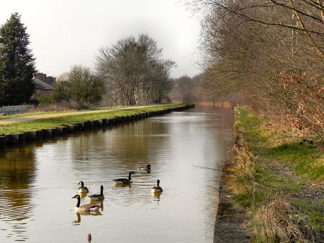The Bridgewater Canal, Monton