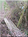 TM3970 : Footbridge on the footpath to Martin's Farm by Adrian Cable