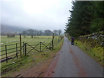 NN2013 : Misty morning on the road up Glen Fyne by Richard Law