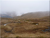 NN2118 : Grassy 'alp' that supports deer, high in the upper coire high on Beinn Bhuidhe by Richard Law