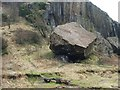 NS3974 : Fallen boulder beside Dumbarton Rock by Lairich Rig