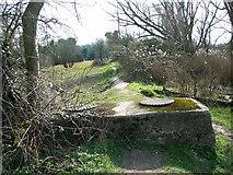 TG2105 : Path in Marston Marsh, Norwich by Evelyn Simak