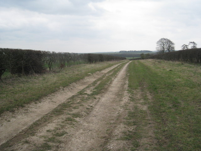 Looking back over the Kiplingcotes Racecourse