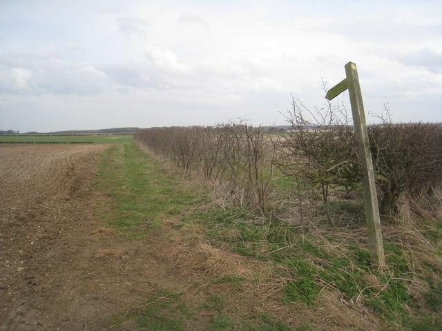 Footpath to Kiplingcotes Farm