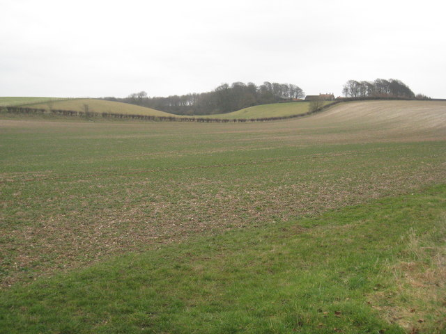 View towards Holmedale Farm