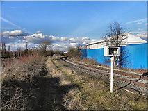 SJ7996 : Disused Railway, Trafford Park by David Dixon