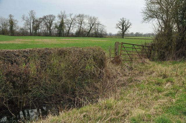 Farmland near Woodgate Farm