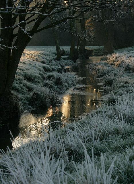 Watercourse beside the River Waveney