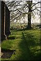 SK2607 : All Saints Church, Graveyard  (19) by Chris' Buet