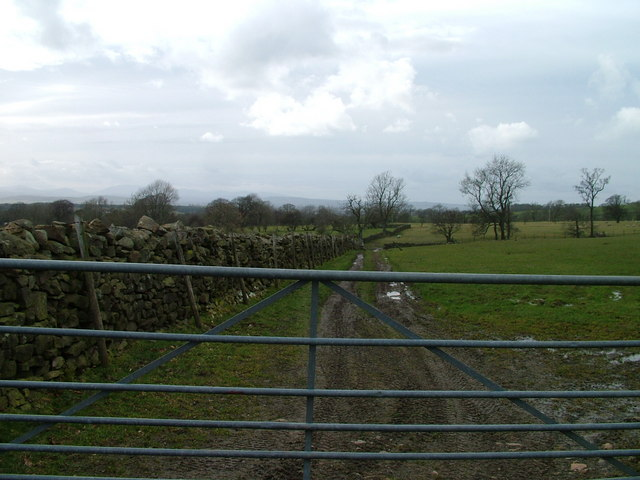 Fields near Knock