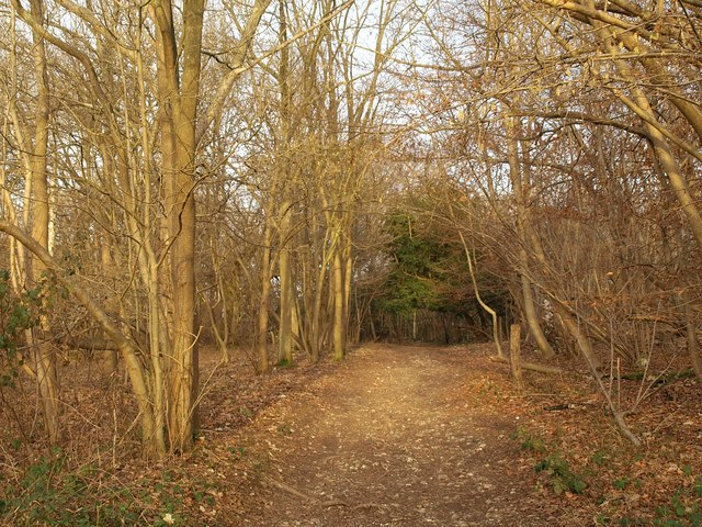 Byway, Mickleham Downs