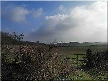 SO9250 : Gate and farmland near Breach Farm by Steve  Fareham