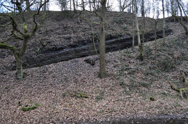 Duckmanton Railway Cutting - Coal Measures