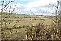 NT8331 : Kilham : Bowmont Hill by Ken Bagnall