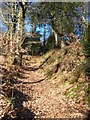 SW8340 : Earthbank and ditch at Roundwood Fort by Rod Allday