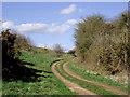SJ7500 : Bridleway south of Beckbury, Shropshire by Roger  Kidd