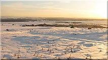 NT4681 : Gullane Links by Richard Webb