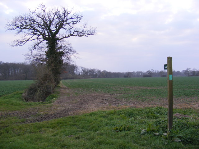 Footpath to Archer's Covert