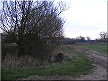 TM3662 : Footpath to the A12 Saxmundham Bypass by Adrian Cable