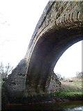 NT3366 : Arch of the Maiden Bridge, Newbattle by kim traynor