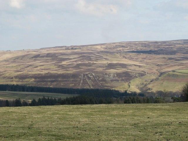 Pastures north of Mount Pleasant