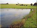 SP6638 : Pond on the Stowe estate - 2 by Trevor Rickard