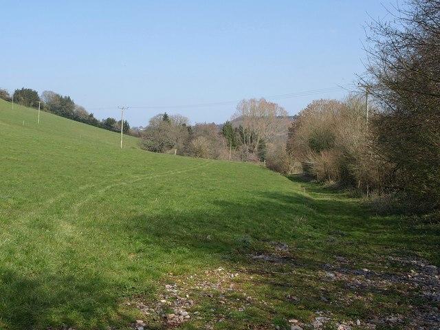 Field near Champerhaies