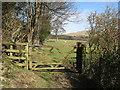 NY2332 : Bridleway near Robin Hood Wood, Bassenthwaite by Adrian Taylor