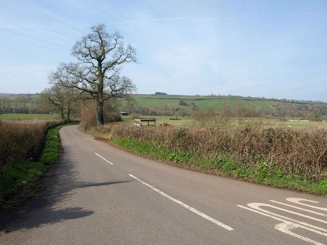 Lane to Bradninch