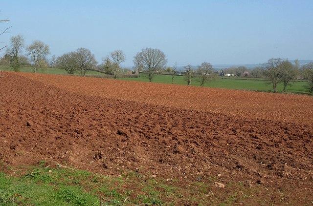 Ploughed field near Bolealler House