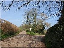 ST0204 : Lane junction near Mutterton by Derek Harper