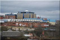 NZ2463 : Urban Graffiti, Newcastle Upon Tyne by N Chadwick