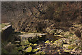 SD6216 : Lead Mines Clough by Ian Greig