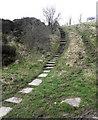 SJ9573 : Steps to the picnic area by Jonathan Kington