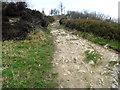 SJ9573 : Top of Saddlers Way by Jonathan Kington