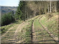 SE5191 : Tracks  in  North  Moor  Wood  Thorodale by Martin Dawes