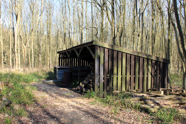 Storage shed in woodland