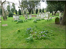 TQ2475 : All Saints, Fulham: spring in the churchyard (g) by Basher Eyre