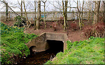 J3673 : Culvert, Knock River, Belfast by Albert Bridge