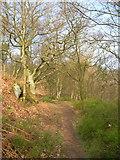 SK2563 : Footpath, Stanton Moor by Mick Garratt