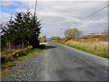C1229 : Road at Toragh by Kenneth  Allen