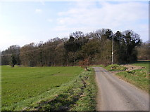 TM3662 : The U2226 looking towards Dodds Wood by Adrian Cable