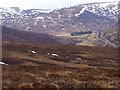 NN6870 : Hillside to the north of Meall a' Bhiord near Dalnaspidal by ian shiell