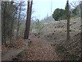 SJ1962 : Parc Gwledig Loggerheads Country Park by John S Turner