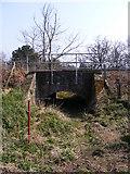 TM3760 : Railway Bridge near the footpath by Adrian Cable