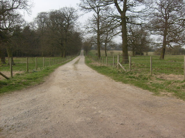 Track to Houghton Hall