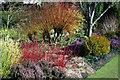 TL4557 : The winter gardens at Cambridge University Botanical Garden by Stuart Logan