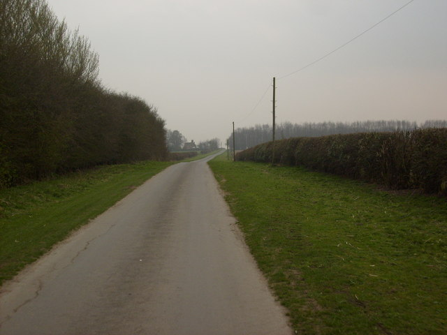 Lane towards High Wood, Kilnwick