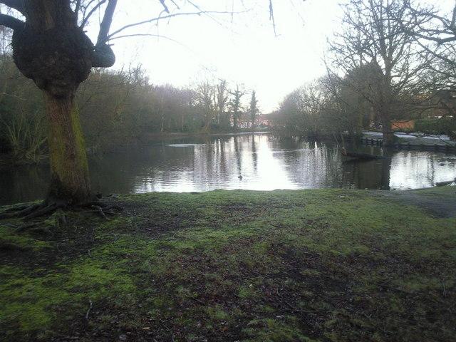 Rush Pond at first light