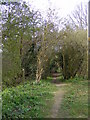 TM3660 : Footpath to Hill Farm Road by Adrian Cable